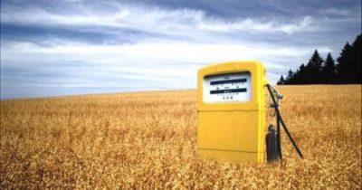 Межправительственный проект Нидерланды-Украина: «Биомасса и биотоплива в Украине»