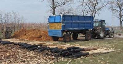 Demonstration projects of energy use of wood from gardens pruning in Zaporizhia region